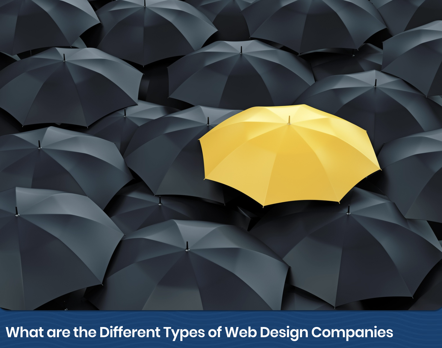 Web_Design_Different_Types_of_Web_Design_Companies